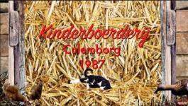 Embedded thumbnail for Kinderboerderij de heuvel Culemborg 1987.