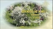 Embedded thumbnail for Een mooie dag in mei !